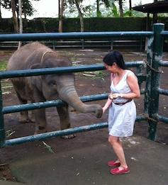 Elefantunge och jag